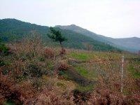 Kamberler Köyü\'den Kandiltepe
