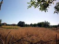 Kese Köyü