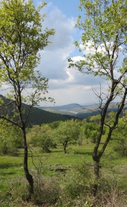 Güzelhisar Baraj Gölü2013Nisan